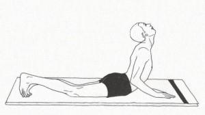 Bhujangasana  Sūrya Namaskāra – приветствие Солнцу: хатха йога Традиции йоги сурья намаскар