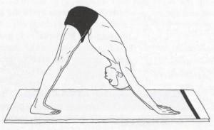 Parvatasana  Sūrya Namaskāra – приветствие Солнцу: хатха йога Традиции йоги сурья намаскар