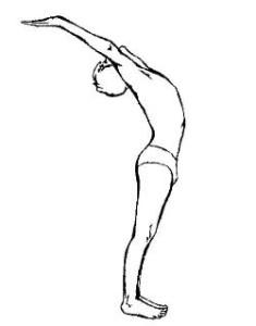 hasta uttanasana2  Sūrya Namaskāra – приветствие Солнцу: хатха йога Традиции йоги сурья намаскар