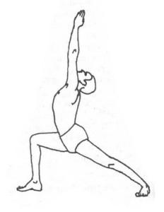 virabhadrasana  Зимние виды спорта и йога: йога и лыжи йога зимой
