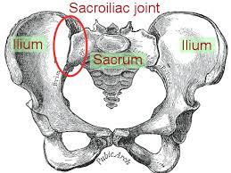 joint  Исцеляем спину: крестцово подвздошный сустав: