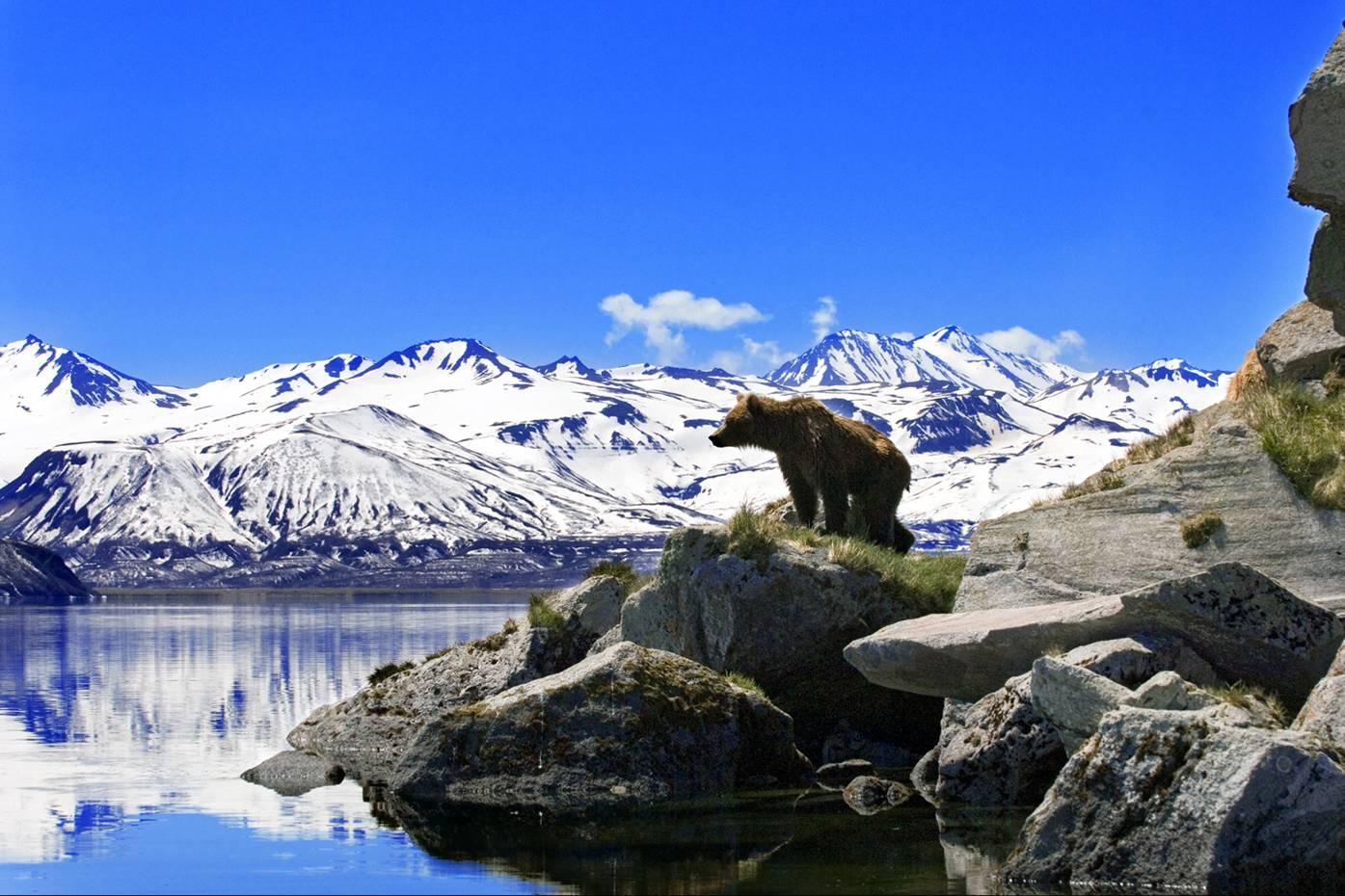 «Страна огнедышащих гор» йога тур на Камчатку 11 — 22 августа: