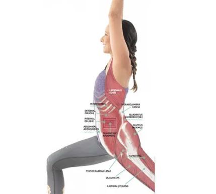 Анатомия йоги: как предотвратить боль в пояснице при скручиваниях: